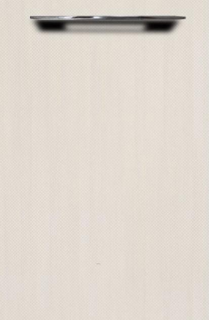 white-birch-2
